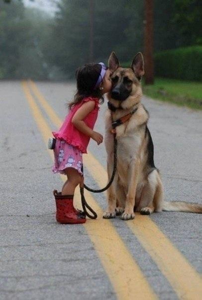 Маленькие дети и большие собаки :)