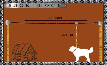 Собака на тросу как сделать