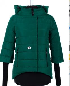 04-1602 Куртка демисезонная (Синтепух 150) Плащевка Зеленый