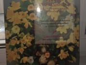 Цветы к праздникам. Букеты, композиции, аранжировк