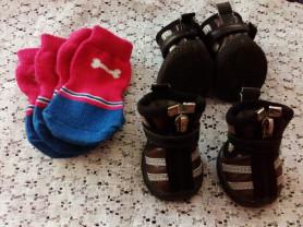 Носки + ботинки для собачки.