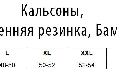 КАЛЬСОНЫ СЕРЫЕ БАМБУК