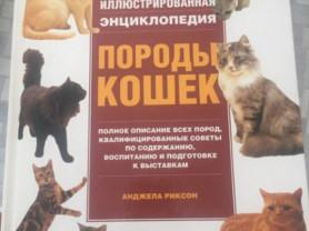 Энциклопедия про кошек