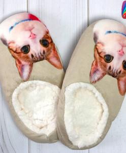 Тапочки женские с котами