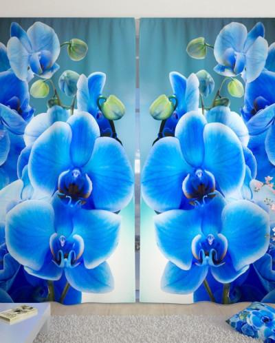 Фотошторы Голубая орхидея Габардин