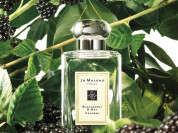 Jo Malone Blackberry & Bay 100 ml Tester