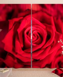 Фотошторы Открытие бордовой розы Габардин