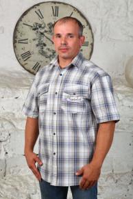 Рубашка шотландка, короткий рукав (модель: М-21)