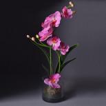 16001-NT Дек/цветы Бордо-орхидея в ст/вазе(х6)
