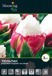 Тюльпан махровый поздний Айс Крим-  1шт