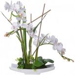 15025-NT Дек/цветы Белая орхидея в кер/вазе(х3)