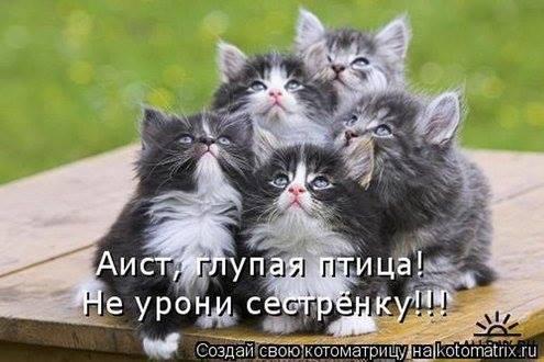 Еще картиночка для нас )))