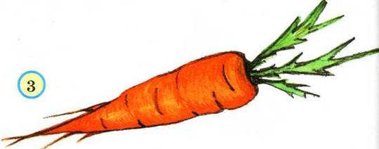 рисунок морковки для детей