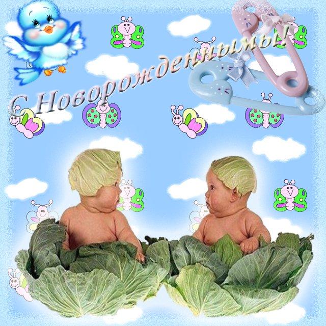 Поздравление с рождением двойни своими словами 271