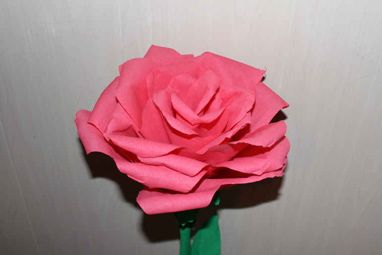 Розы в сад