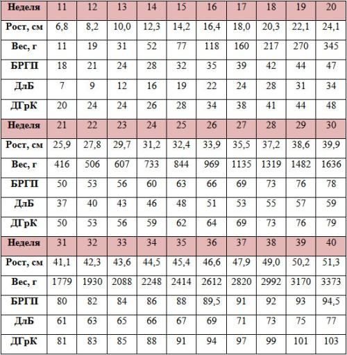 Длина шейки матки по неделям беременности таблица