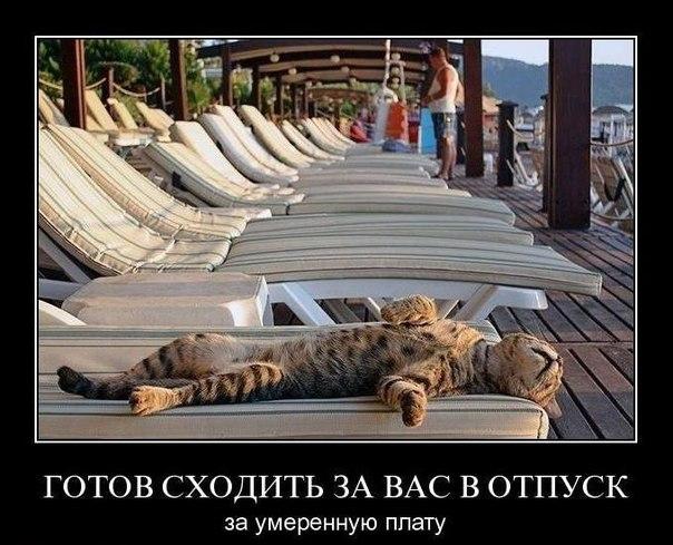 хочу отпуск!!!!!! хочу лето!!!!