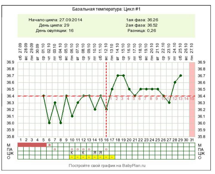 Беременный график бт при цикле 28 дней