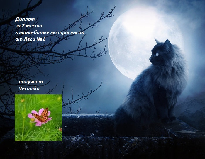 Мои дипломчики)))