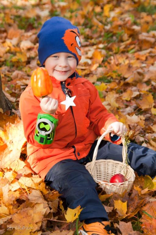 Осень! Осень! Ну давай у листьев спросим!))
