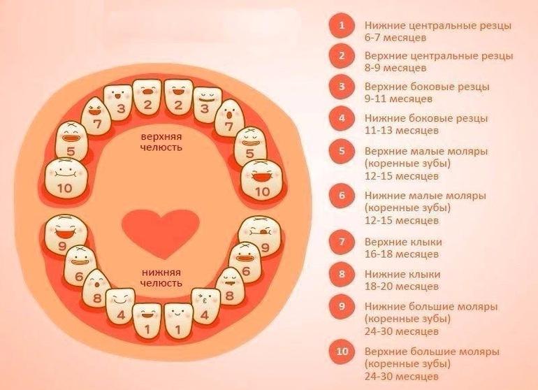 Могут ли в три года лезут зубы