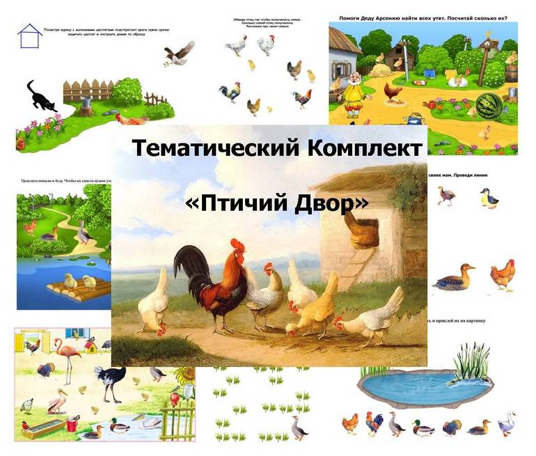 ТК Птичий Двор