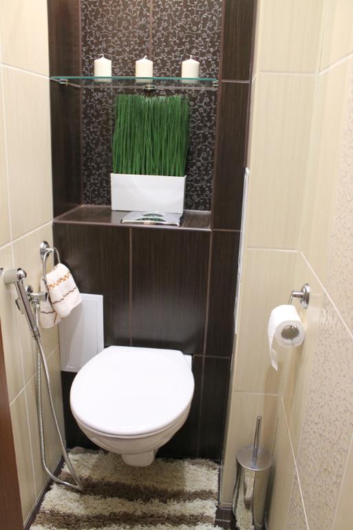 фото в туалете толстух