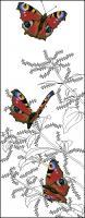Схема колибри на цветке бэкстич