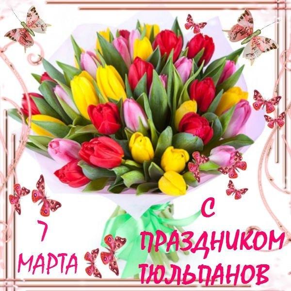 с днём тюльпанов мои милые!!!!!!!