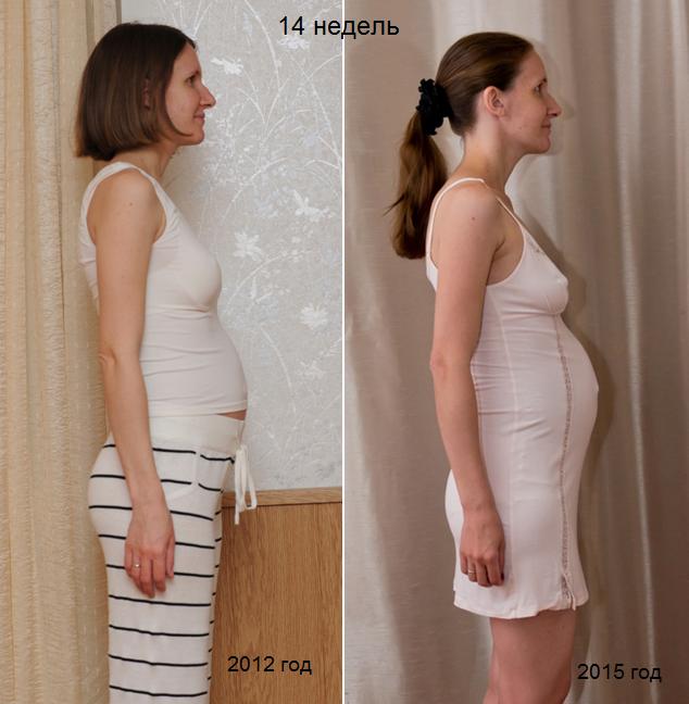 Мои беременные графики базальной температуры 68