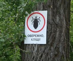 Осторожно клещи!!!
