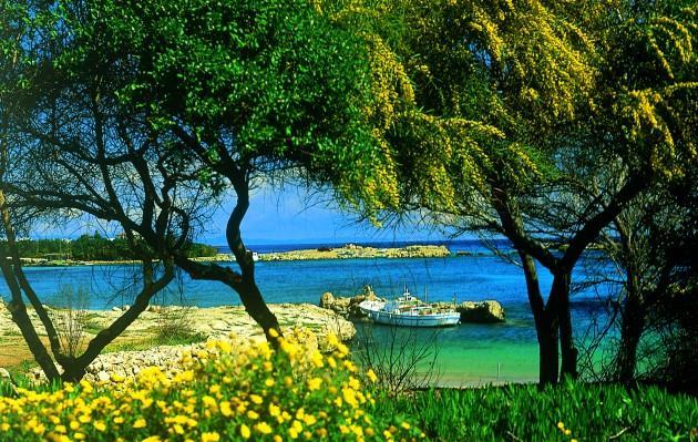 Едем на Кипр в июле