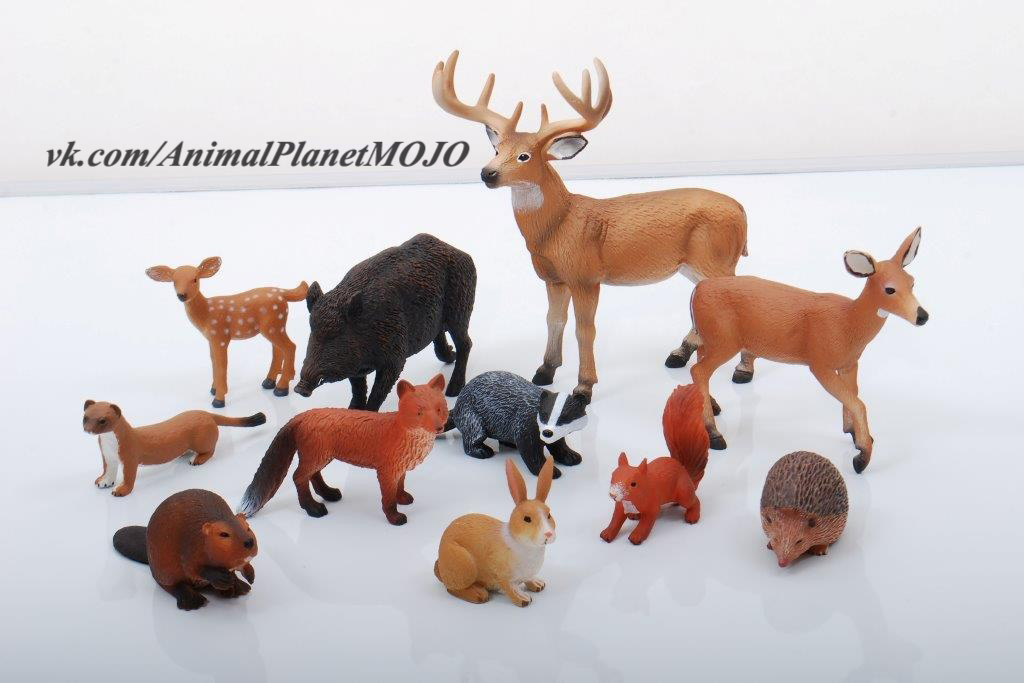 Картинки животных свиньи лошади зимой явление