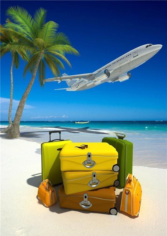 Картинки чемодан и пальмы