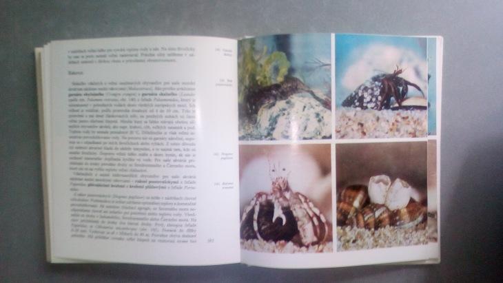 Морские Аквариумы Ladislav Andodi 1973 год