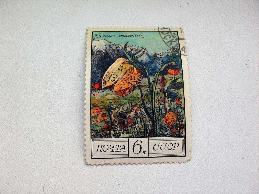 Марка 6к 1976 год СССР Рябчик желтый