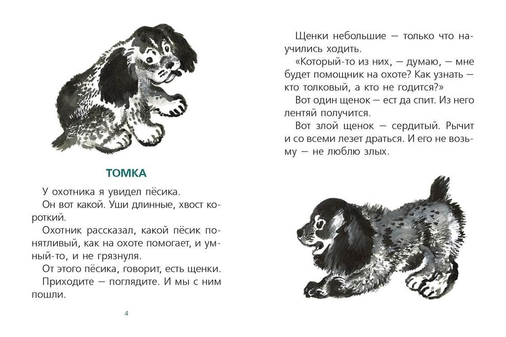 Евгений Чарушин Про Томку 2016 г.