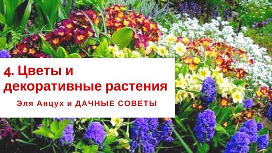 Как сделать цветок в банке своими руками в домашних 100