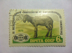 Марка 6к 1975 год СССР Каракулеводство Самарканд