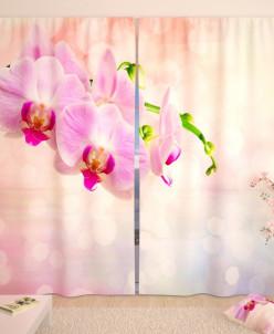 Фотошторы Нежно-розовые орхидеи Габардин