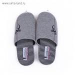 Обувь домашняя мужская 1379M-ASC-S (серый/чёрный)