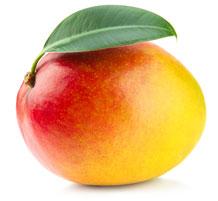 Ваш малыш по размерам словно манго