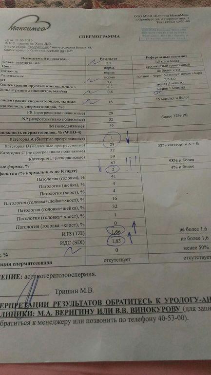 Сколько стоит спермограмма в г оренбурге