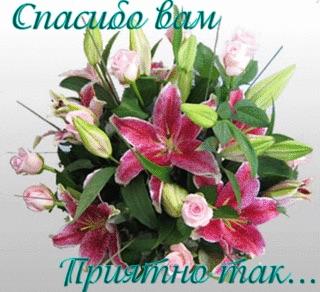 https://cdn.imgbb.ru/user/112/1125951/201503/d1382240a2767fc0d598e253c1a75eec.jpg