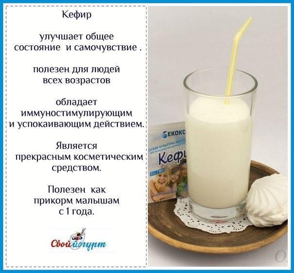 Какое Молоко Лучше Для Диеты. Что будет если питаться только молочными продуктами
