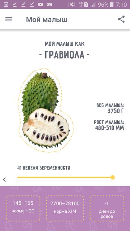Календарь беременности с картинками фруктов